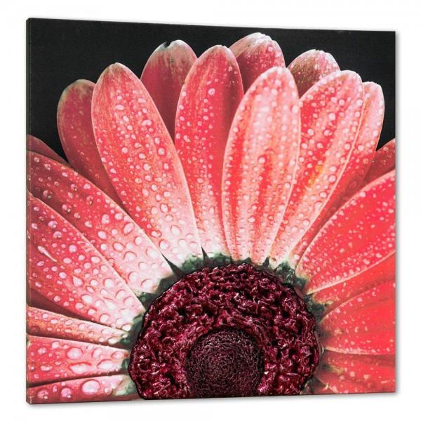 RED DAISY - Стенно пано с релефна декорация