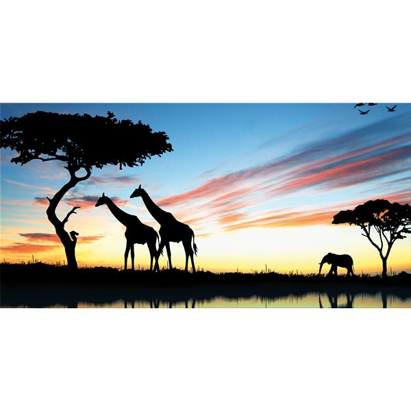 SAVANA - Модерен фото принт